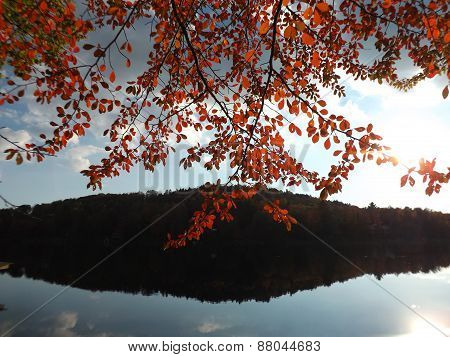 Fall Leaves with silhouetted hill reflection at a Lake