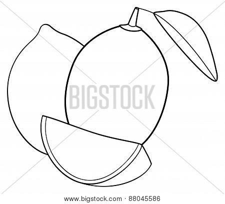 Delightful Garden - Two Lemons, One Leaf And One Slice Of Lemon