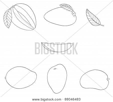 Delightful Garden - Set Of Five Mangos, One Slice And Three Leaves