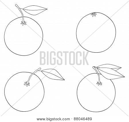 Delightful Garden - Set Of Four Oranges With Leaves