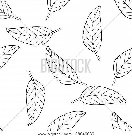 Shadeful Forest - Seamless Pattern Of A Lot Of Mango Leaves