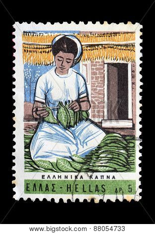 Woman With Tobacco Leaves Postage Stamp