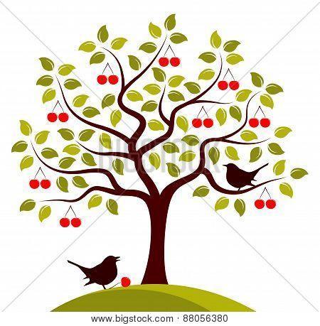 Cherry Tree And Birds