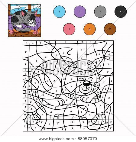 Color By Number (sleepy Cat)