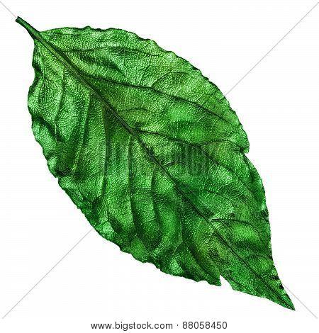 Emerald Green Dry Leaf, Vintage Element