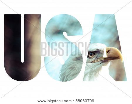 Word Usa Over Head Of Eagle.