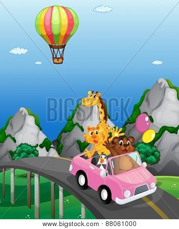 Animals riding in convertible to the countryside