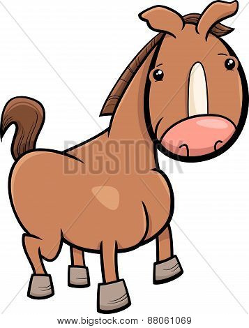 Little Horse Or Foal Cartoon