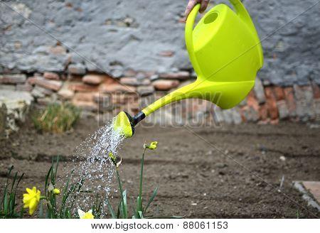 Spring work in the garden