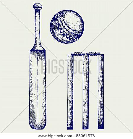 Set equipment for cricket