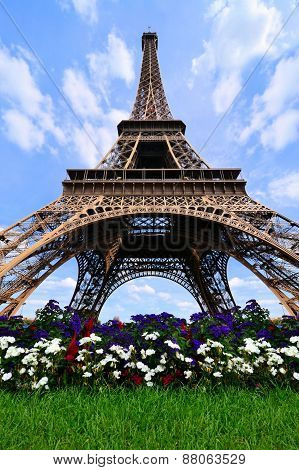 Eiffel Tower with flowers, Paris, France
