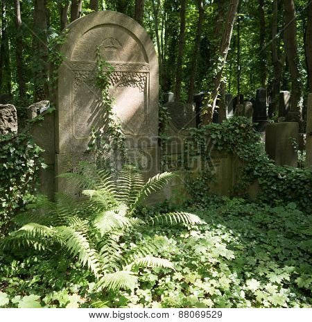 Overgrown Grave Stone In A Cemetery