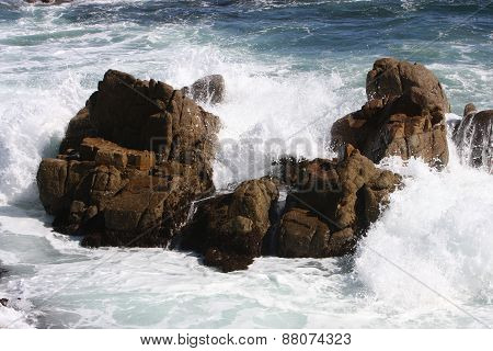 Coastal Rocks Up Close