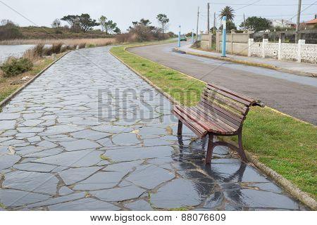 Bench In A Promenade