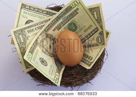 US Dollars in a Nest