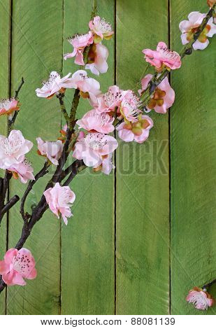 Spring blossom flowering branches of cherry (sakura) on rustic wooden table
