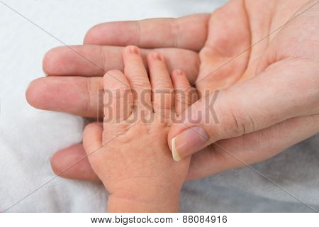 Baby Holding Parent Finger