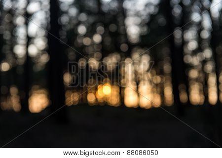 Orange Festive Blur Background With Beautiful Boke