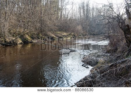 Scenic Spring Colored River In Country