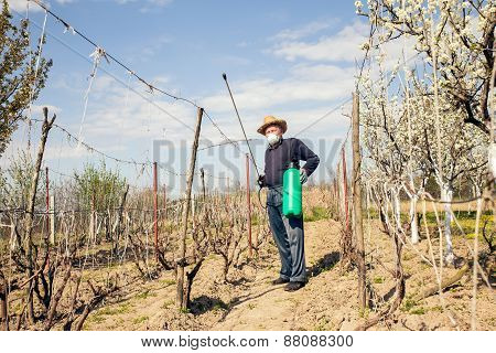 A farmer sprays his vineyard. He is wearing protective equipment. Selective focus
