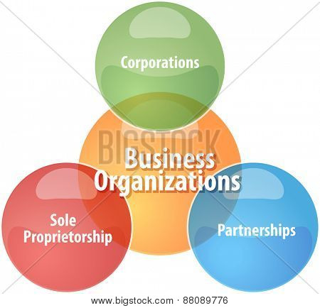 business strategy concept infographic diagram illustration of business organizations types