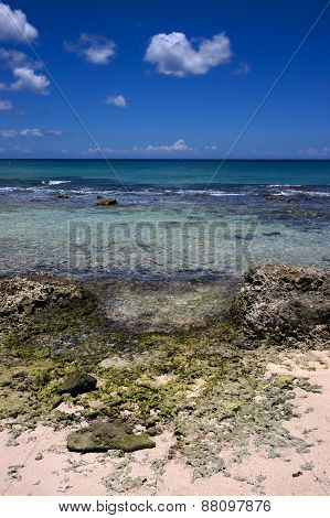 Beach Rock And Stone Dominica