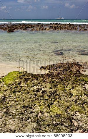 Beach Rock And Stone Cabin In  Republica Dominicana
