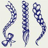 picture of braids  - Women braid - JPG