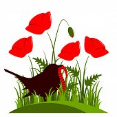 picture of worm  - vector corn poppy and bird with worm isolated on white background - JPG