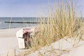 picture of dune grass  - Picture of dune grass on the Baltic Sea beach with a beach chair in the background - JPG
