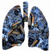 pic of disgusting  - Outline of lungs filled with - JPG