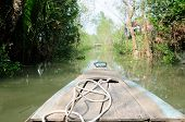 stock photo of bamboo forest  - The front of a bamboo boat as it moves through a mangrove forest in the Mekong River delta in south Vietnam - JPG