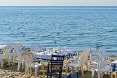 pic of flock seagulls  - Exotic scene after dinner on the beach and a flock of flying seagulls - JPG