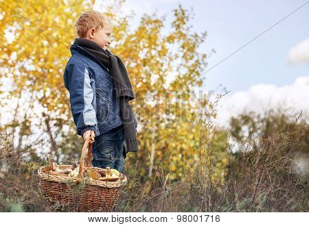 Boy In Autumn Forest With Full Basket Of Mushrooms
