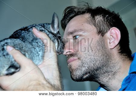 Man with gray chinchilla on hands