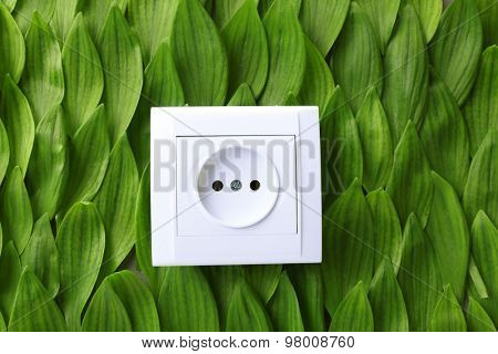 Socket isolated on white