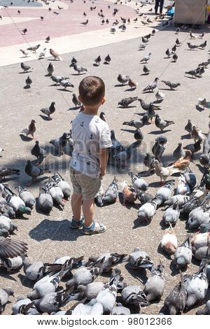 Boy Is Surrounded By Pigeons