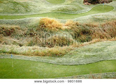 Frost On A Mini-golf Lawn