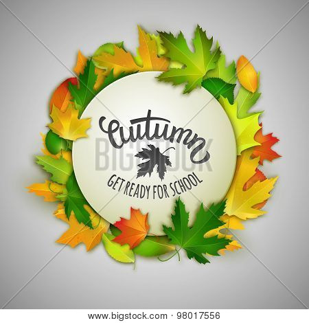 Autumn Back To School Vector Illustration, White Banner With Colorful Maple Leaves