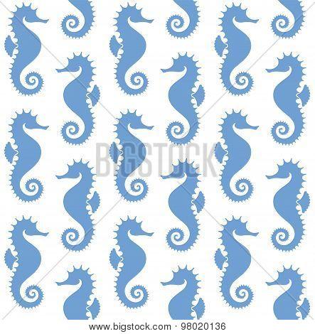 Seahorse. Pattern