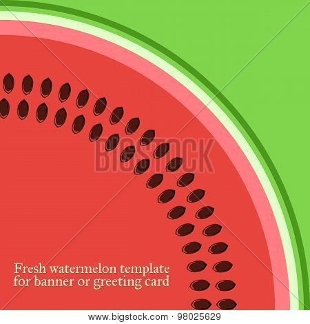 Watermelon. Vector template