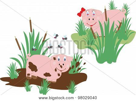 Funny Pig Lovers
