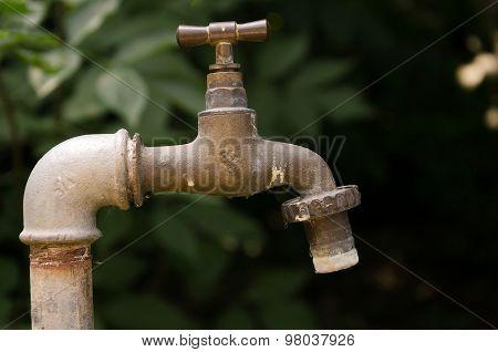 water tap in the garden