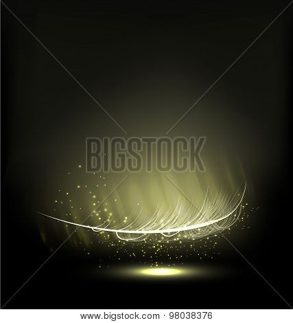 abstract glowing feather