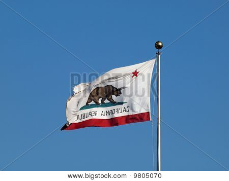 Worn California Republic State Flag Flying In Reverse In Strong Winds