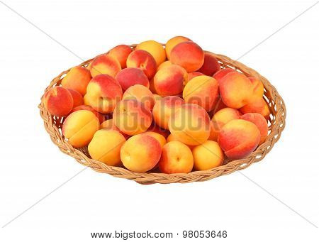 Apricot in wattled plate