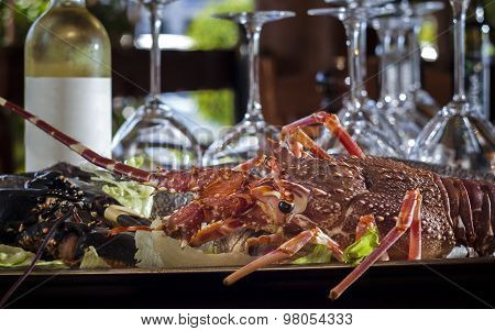 fresh lobster with bottle of white wine
