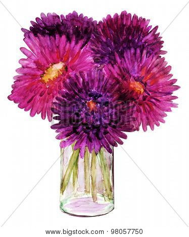 Watercolor painting aster flowers in a vase on white background
