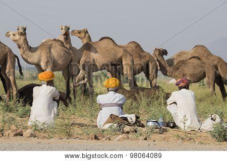 Indian Three Men Attended The Annual Pushkar Camel Mela. India
