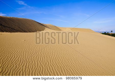 Sand dune in Mui Ne, Binh Thuan province, Vietnam